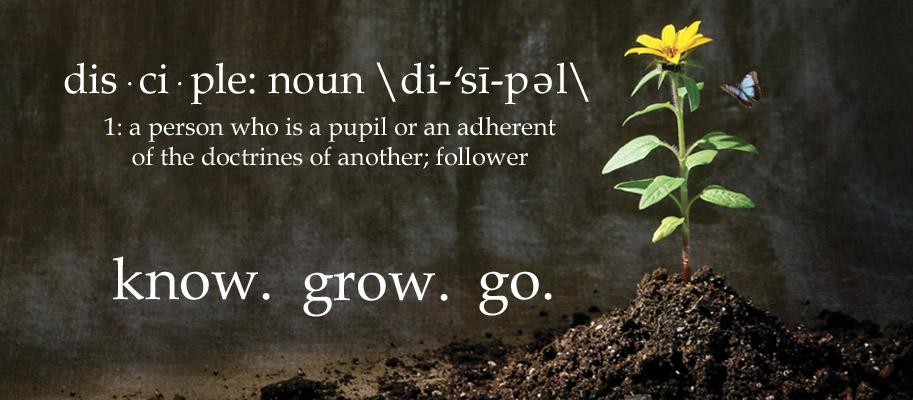 know grow go gfx banner