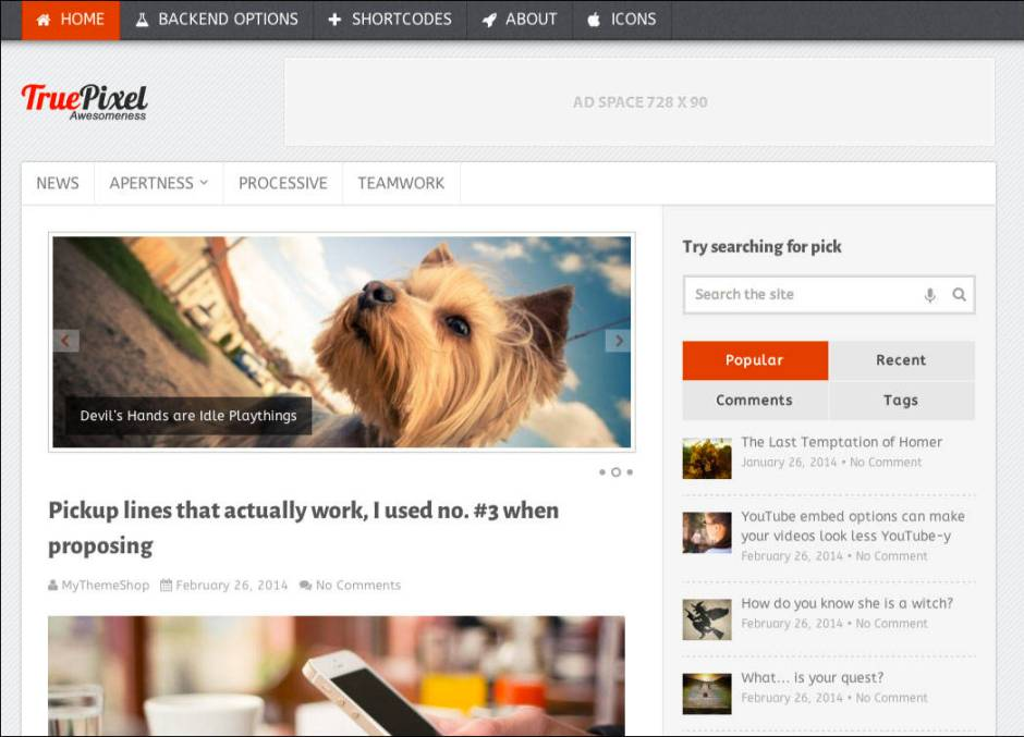 TruePixel SEO friendly wordpress themes