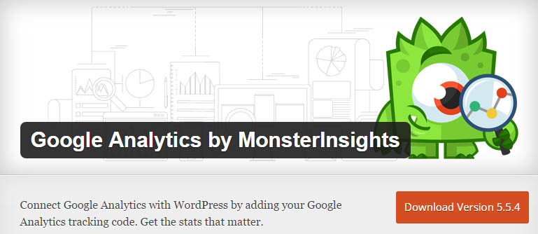 how to add Google Analytics by MonsterInsights plugin