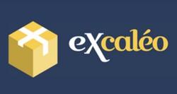 Logo eXcaleo 2021