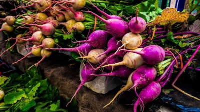 vegetables-farm-080002