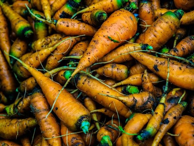 vegetables-farm-080008