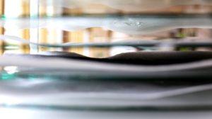 Lacerated Diary – Dimridåer. Närbild på blöta pappersark som ligger på glasskivor. Foto: Calle Holck.