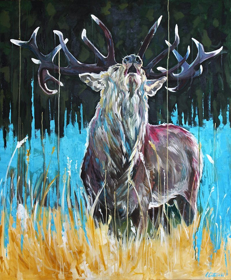 The Bellowing Stag - Louise Catterall