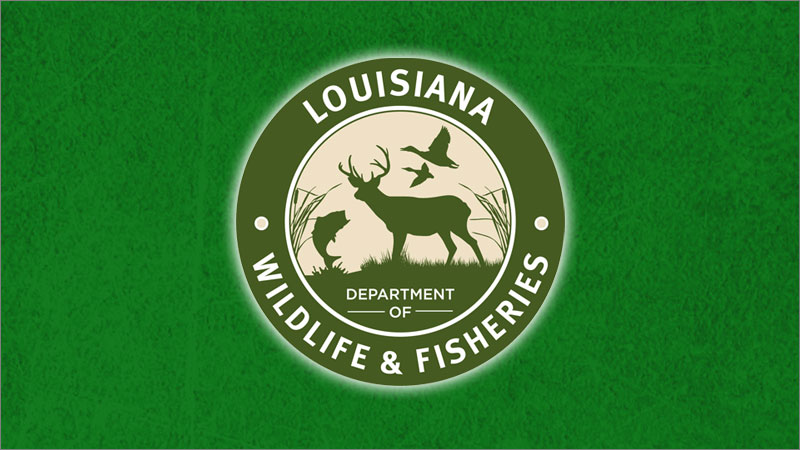 Shrimp season to open May 10 in the remaining state outside waters