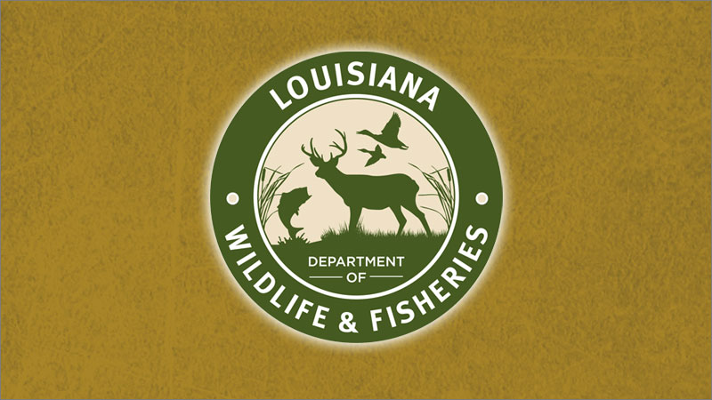 Three men cited for charter guide violations in Plaquemines and St. Bernard parishes