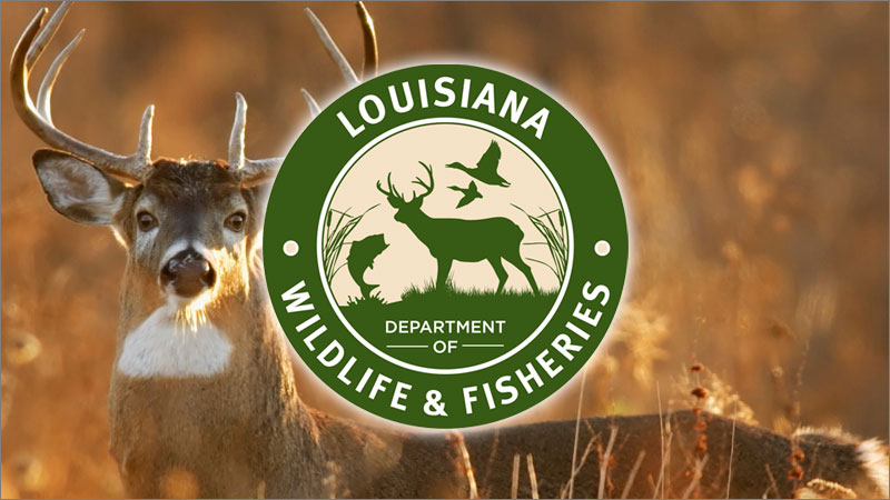 LWFC approves amendment pertaining to natural deer urine