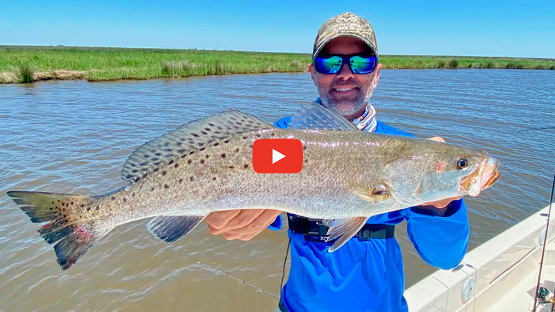 Plenty speckled trout CLOSE to river water!