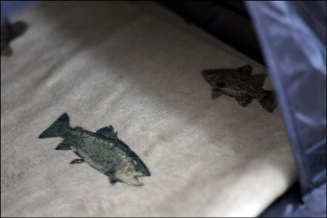 eds-fish-pillow-case