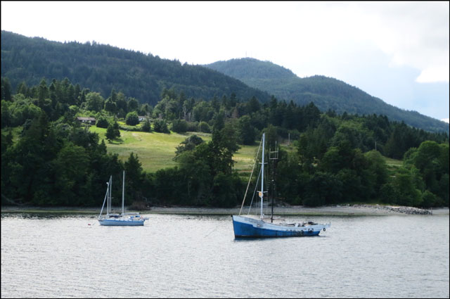 coastline-with-sail-boats