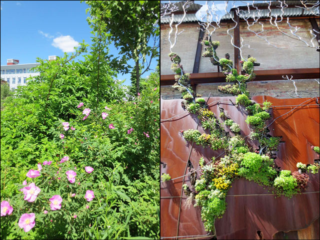 gardens-at-brickworks-toronto