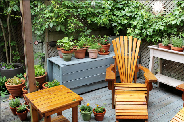 getting-potted-herb-garden-started