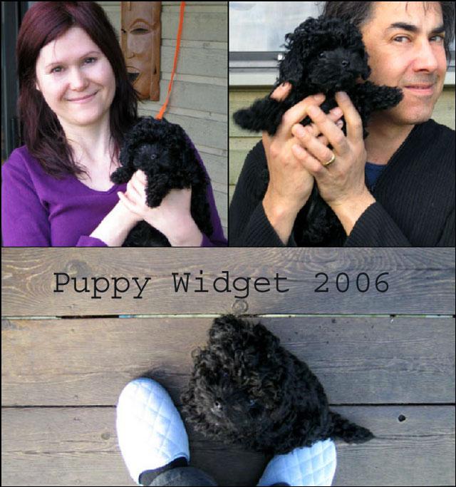 puppy-widget-2006