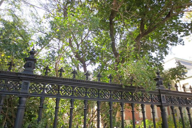fence-around-osgoode-hall