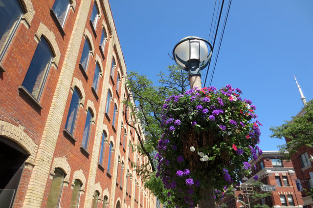 flowers-king-st-west