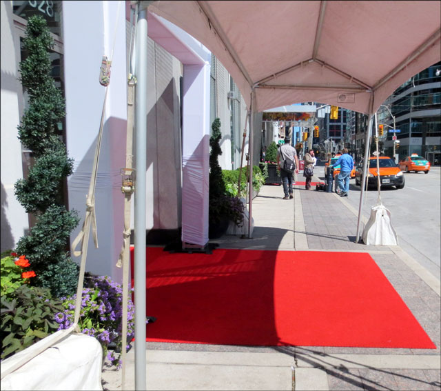 red-carpets-on-wellington-s