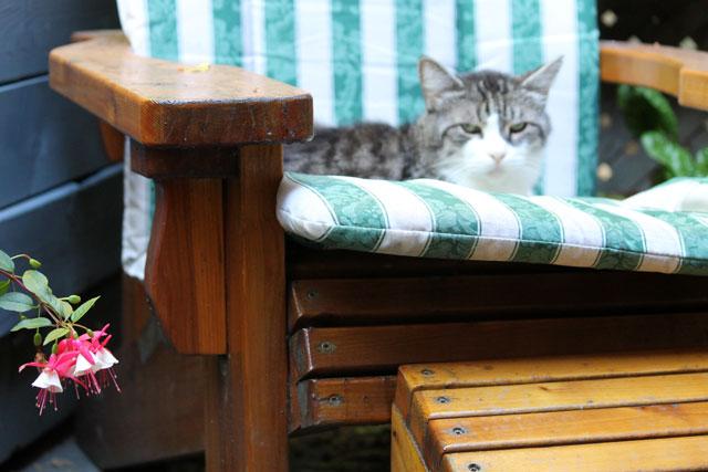 eddie-on-his-chair