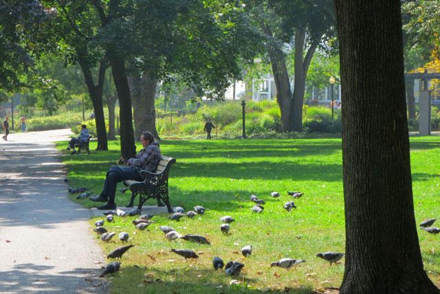 park-allen-gardens