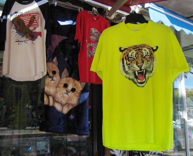 tiger-shirt-cat-blanket-china-town