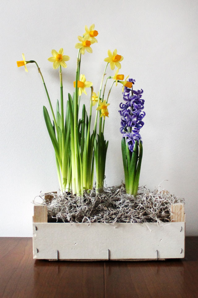 DIY indoor planter box made from an orange crate