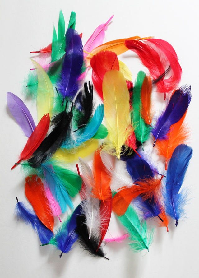 coloured-crafting-feathers