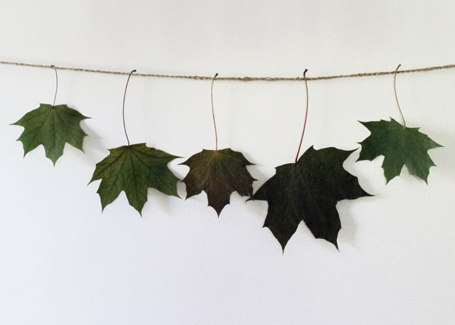 making-a-leaf-garland-with-real-leaves