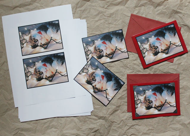 making-greeting-cards-from-your-own-photographs-diy