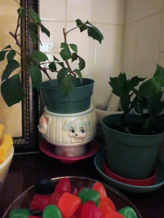 vintage-plant-pot