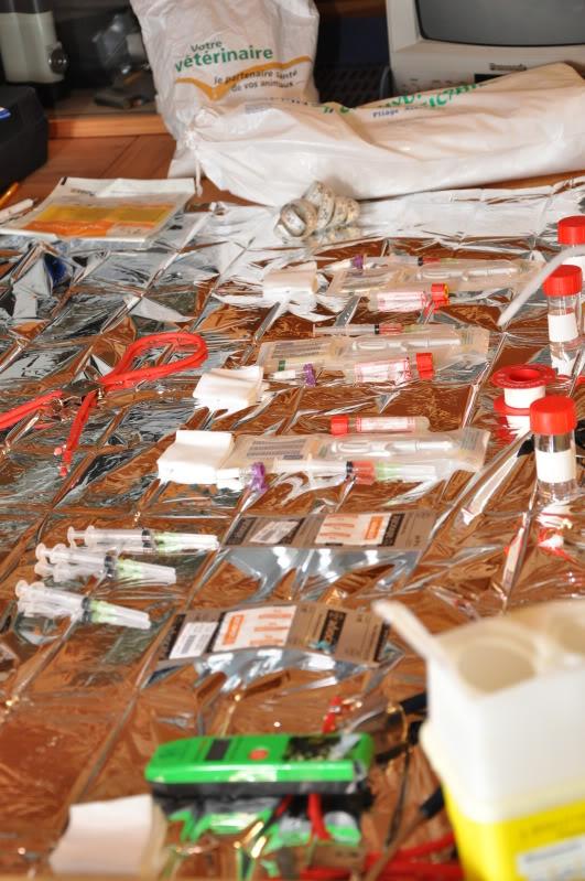 vaccination-louveteaux-klan-du-loup-present-2