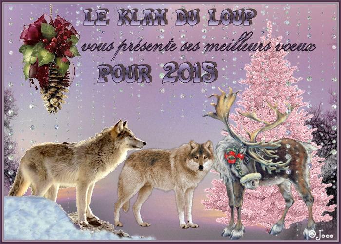meilleurs-voeux-lupins-2015