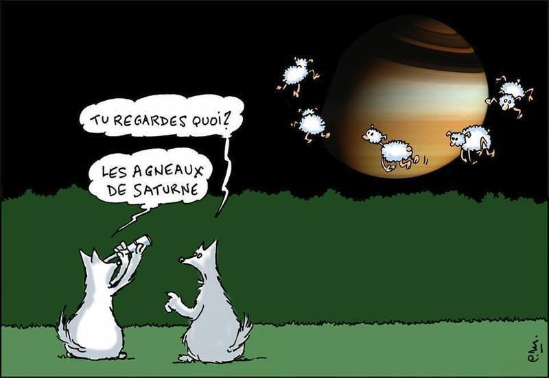 humour-lupin-7