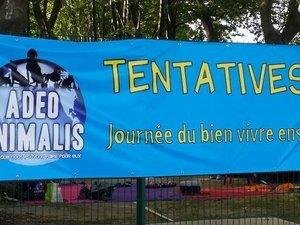 TentativesII Adeo Animalis Avignon