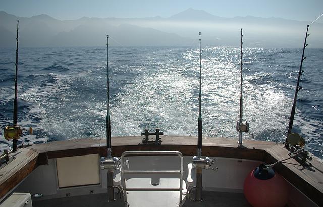 pêcher à la traîne