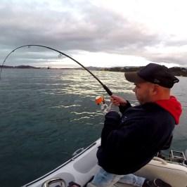 action de pêche