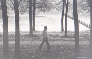 Le 19 octobre 1980, Michel Rocard dans le parc de Marly quelques heures avant sa déclaration de candidature à l'élection présidentielle