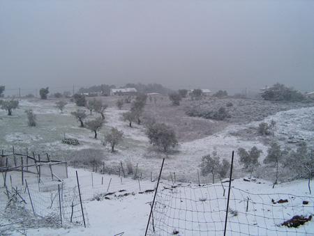 snow07-41