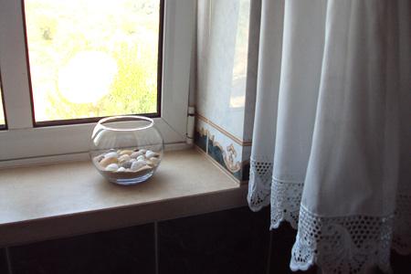 seashell-aquarium4