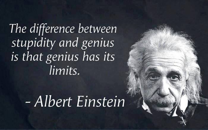 The Difference Between Stupidity and Genius