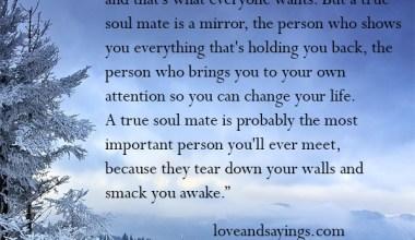 A True Soul Mate Is A Mirror