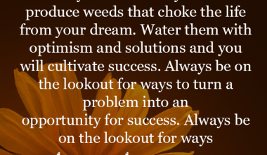 Ways To Turn A Problem Into An Opportunity For Success