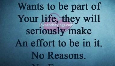 No Reasons No Excuses