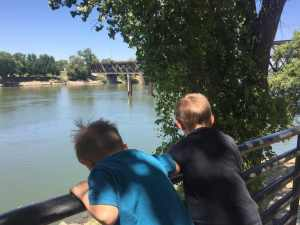 sacramento river, bridge