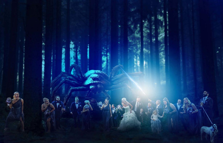 Atlanta Wedding Photographers Wedding Party Composite Harry Potter Theme