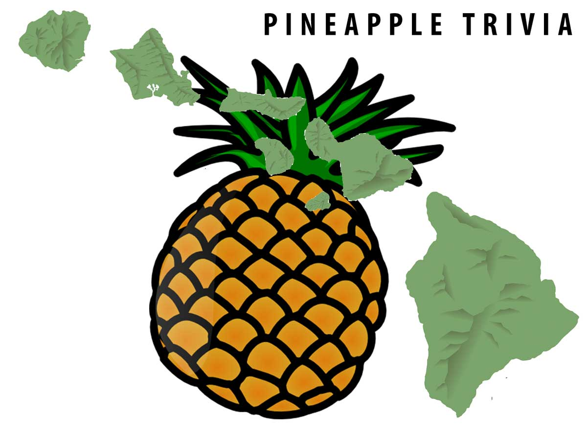 Pineapple Trivia And Facts