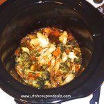 Chinese Teriyaki Chicken with Veggies Crock Pot Recipe