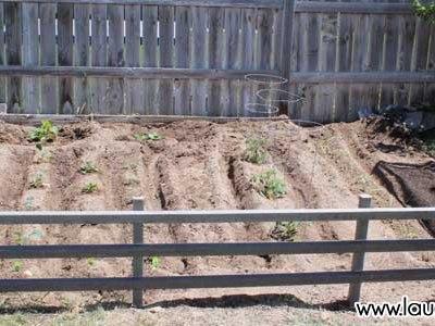 From sandbox to garden: A three day transformation
