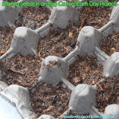 Starting Seeds in Egg Cartons {Earth Day Project}