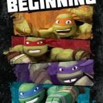 Teenage Mutant Ninja Turtles Season 1 on DVD
