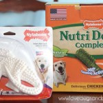 Nylabone Coupon + Reasons I love Nylabone for my dog