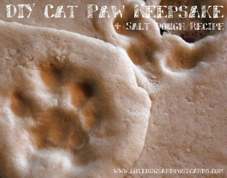 DIY Cat Paw Keepsake + Salt Dough Recipe